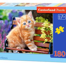 Castorland Castorland puzzel Ginger kitten (180 stukjes)