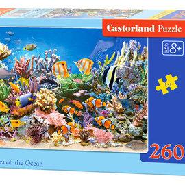 Castorland Castorland puzzel Colours of the Ocean (260 stukjes)