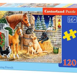 Castorland Castorland puzzel Gathering Friends (120 stukjes)