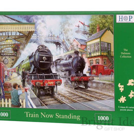 The House of Puzzles The House of Puzzles puzzel - Train Now Standing (1000 stukjes)