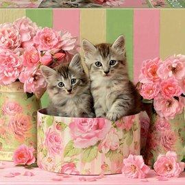 Educa Educa puzzel Kittens with roses (500 stukjes)