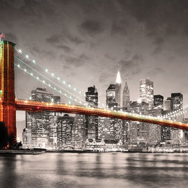 Educa Educa puzzel New York City Brooklyn Bridge (1000 stukjes)