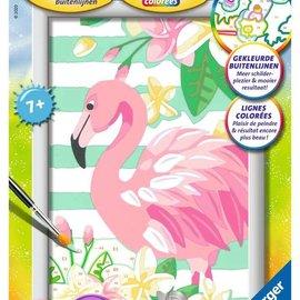 Ravensburger Schilderen op nummer - Flamingo (13 x 18 cm)