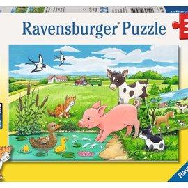 Ravensburger Ravensburger Jonge dieren op het platteland (2x12 stukjes)