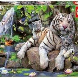 Educa Educa White Tigers of Bengal (1000 stukjes)