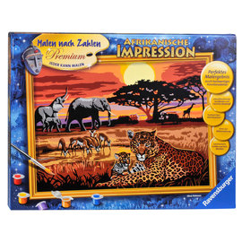 Ravensburger Schilderen op nummer Afrikaanse Impressie (40 x 30 cm)
