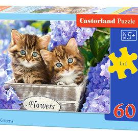 Castorland Castorland puzzel Cute Kittens (60 stukjes)