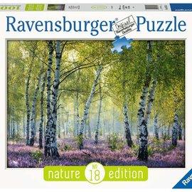 Ravensburger Ravensburger puzzel Berkenbos (1000 stukjes)