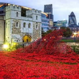 Wentworth Wentworth houten puzzel - Tower of London Remembrance (40 stukjes)