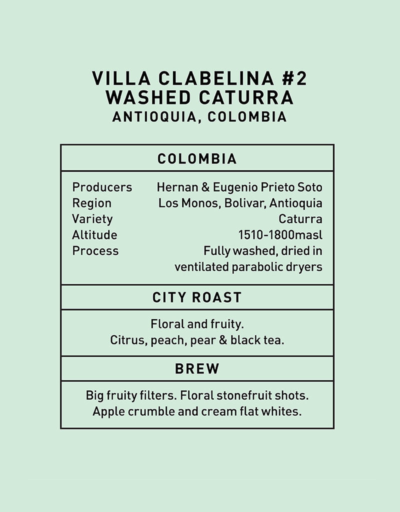 Father Coffee Villa Clabelina Washed Caturra #2, Colombia