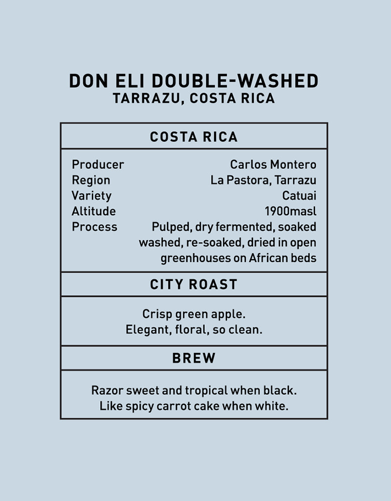 Father Coffee Don Eli Double-Washed, Tarrazu, Ethiopia