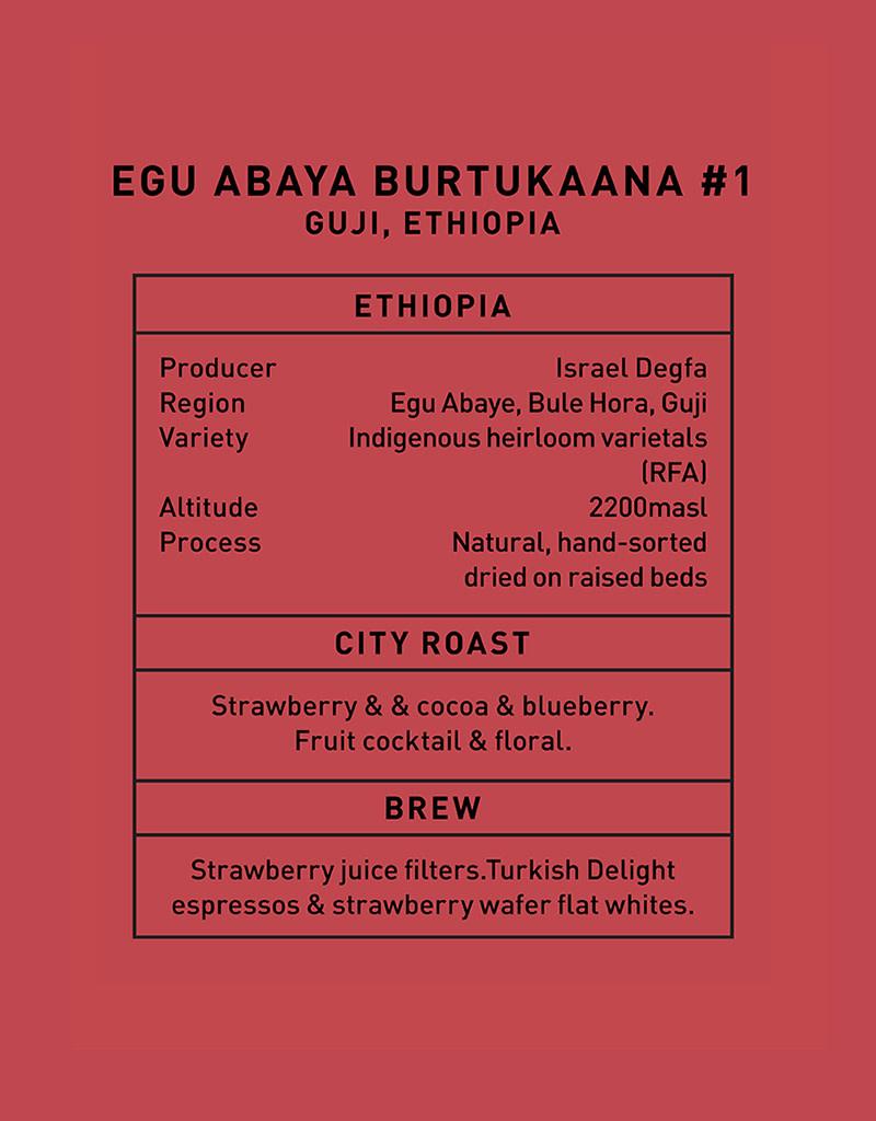 Father Coffee Egu Abaya Burtukaana #1, Guji, Ethiopia