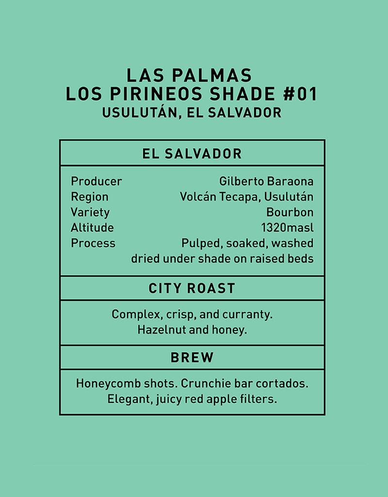 Father Coffee Las Palmas Los Pirineos Shade #1, Usulután, El Salvador