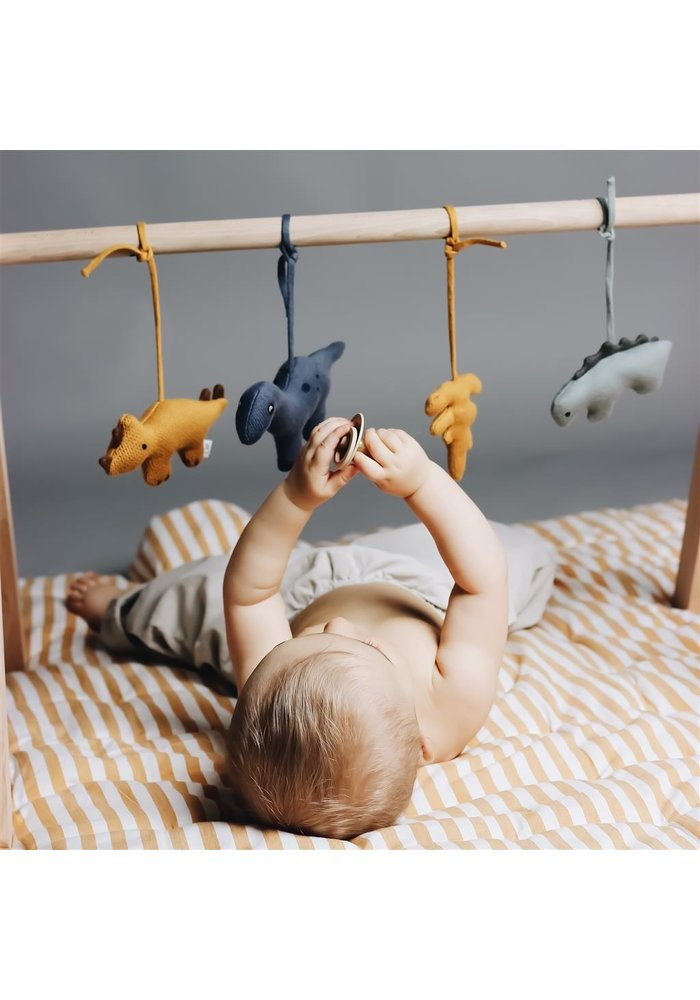 Gio Playgym Accessories