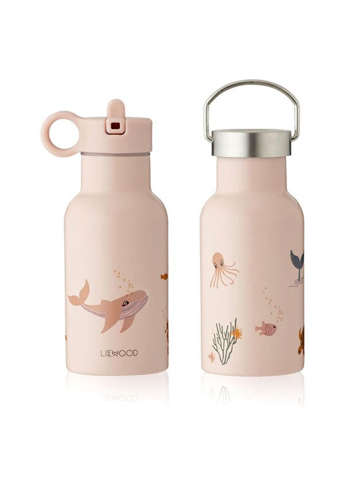 Anker Water Bottle Sea Creatures