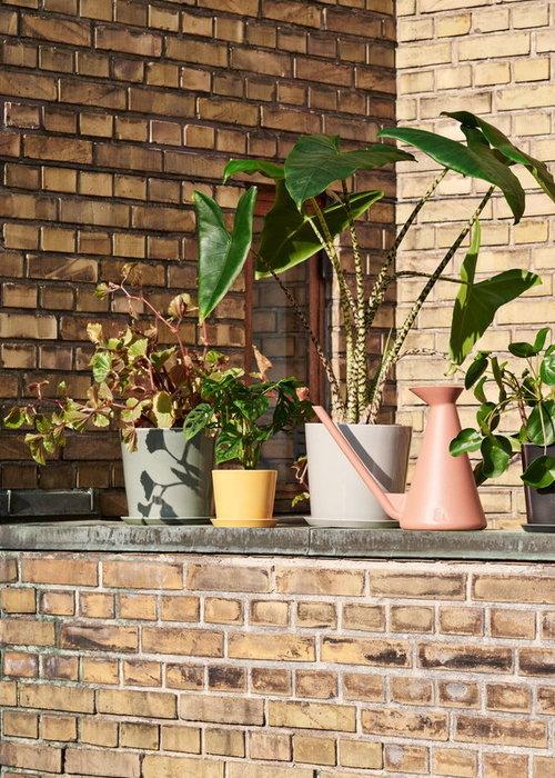 HAY Botanical Family Set XL Dusty Green