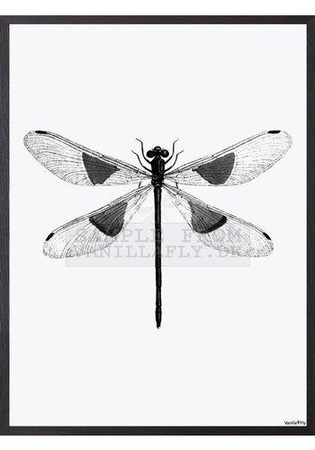 Vanillafly Frame 30x40cm