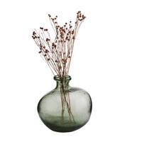 Organic Glass Vase