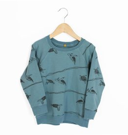 Lotie kids Sweatshirt turtles