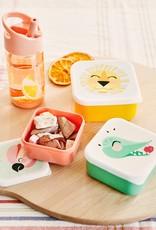 Petit Monkey Lunchbox set shiny lion