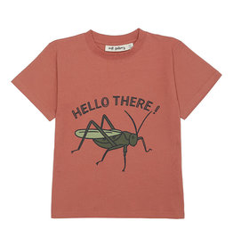 Soft gallery Ager t-shirt | Baked Clay, Grasshopper