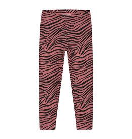 DAILY BRAT Zebra pants marsala