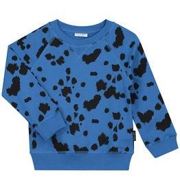 DAILY BRAT Dalmatian sweater |Royal blue