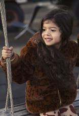 Ammehoela AM.Lola.03 | brown leopard