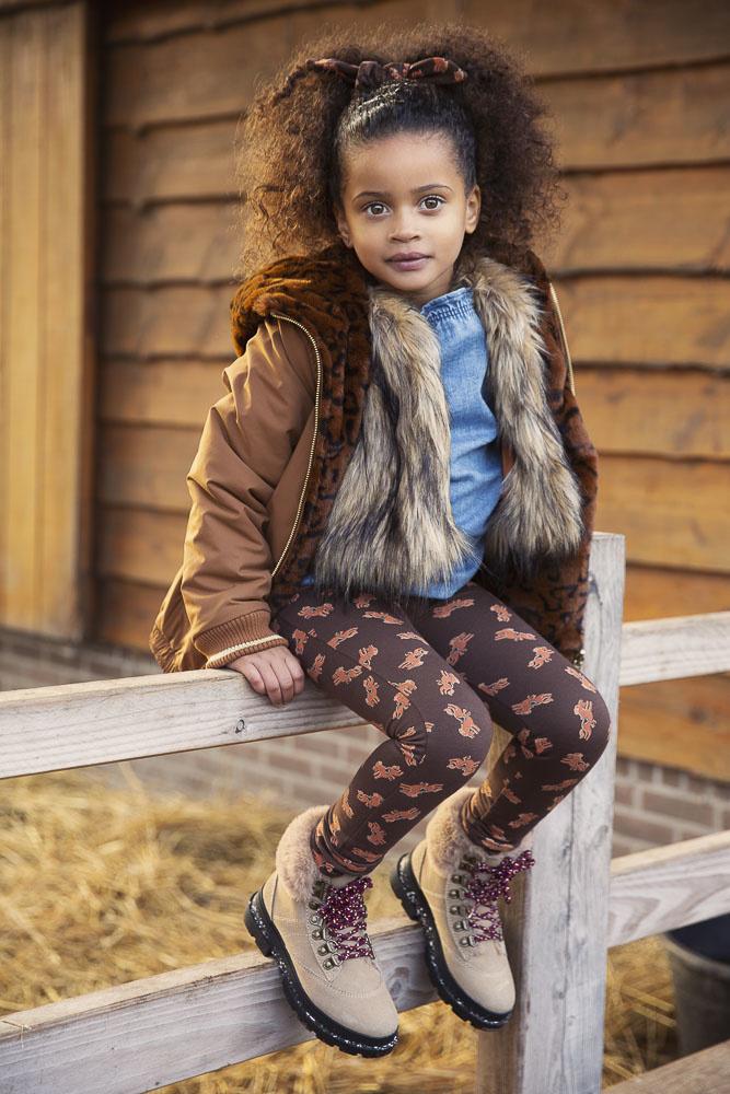 Ammehoela AM.James.15 | horse-brown
