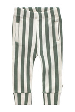 Your Wishes Bold Stripes | Fitted Pants