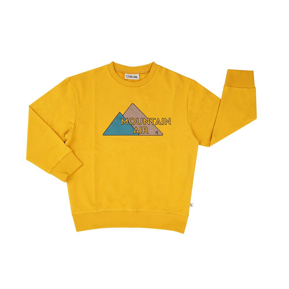 CarlijnQ Mountain Air | sweater wt print