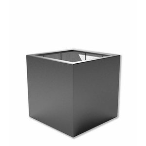 Buxus PB9 (100cm x 100cm x 100cm)