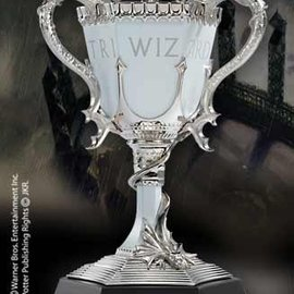 Harry Potter-The Triwizard  Cup