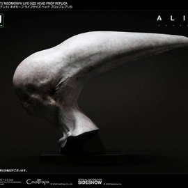 Pre-Order Pre-Order : Alien  Covenant - Neomorph Life Sized Head