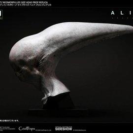 Pre-Order Pre-Order : Alien  Covenant - Neomorph Life Sized Head
