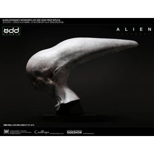 Pre-Order : Alien  Covenant - Neomorph Life Sized Head