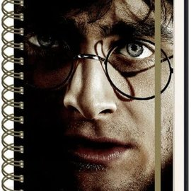 Hole In The Wall Harry Potter Harry & Voldemort 3D Cover- A5 3D Lenticular Notitieboek