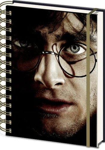 Harry Potter Harry & Voldemort 3D Cover- A5 3D Lenticular Notitieboek