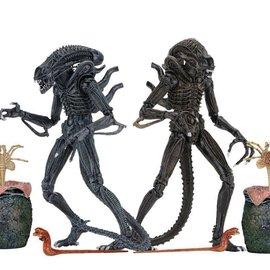 NECA Aliens: Ultimate Aliens warrior 1886 7 inch action figure asst. set of 2