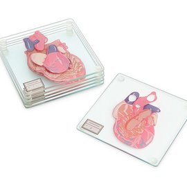 Think Geek HEART SPECIMEN COASTERS