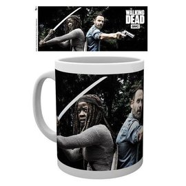 Hole In The Wall THE WALKING DEAD RICK AND MICHONNE