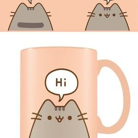 Hole In The Wall Pusheen Hello Goodbye - Mok