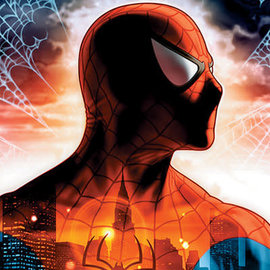 Hole In The Wall Marvel Spiderman Protector Of The City Maxi Poster