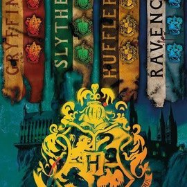 Hole In The Wall Harry Potter House Flags - Maxi Poster