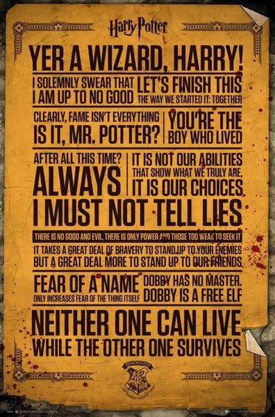 Hole In The Wall Harry Potter Quotes - Maxi Poster