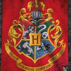 Hole In The Wall Harry Potter Hogwarts Flag - Maxi Poster
