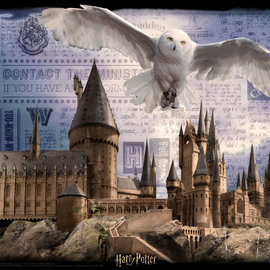 Harrison Super 3D Harry Potter 300 Piece Jigsaw Puzzle - Hogwarts and Hedwig