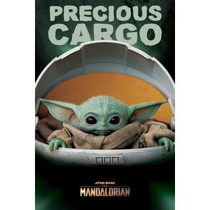 Hole In The Wall Star Wars The Mandalorian Precious Cargo Maxi Poster