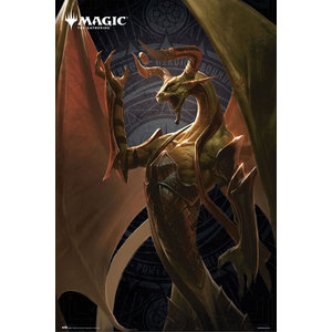 Hole In The Wall Magic the Gathering Nicol Maxi Poster