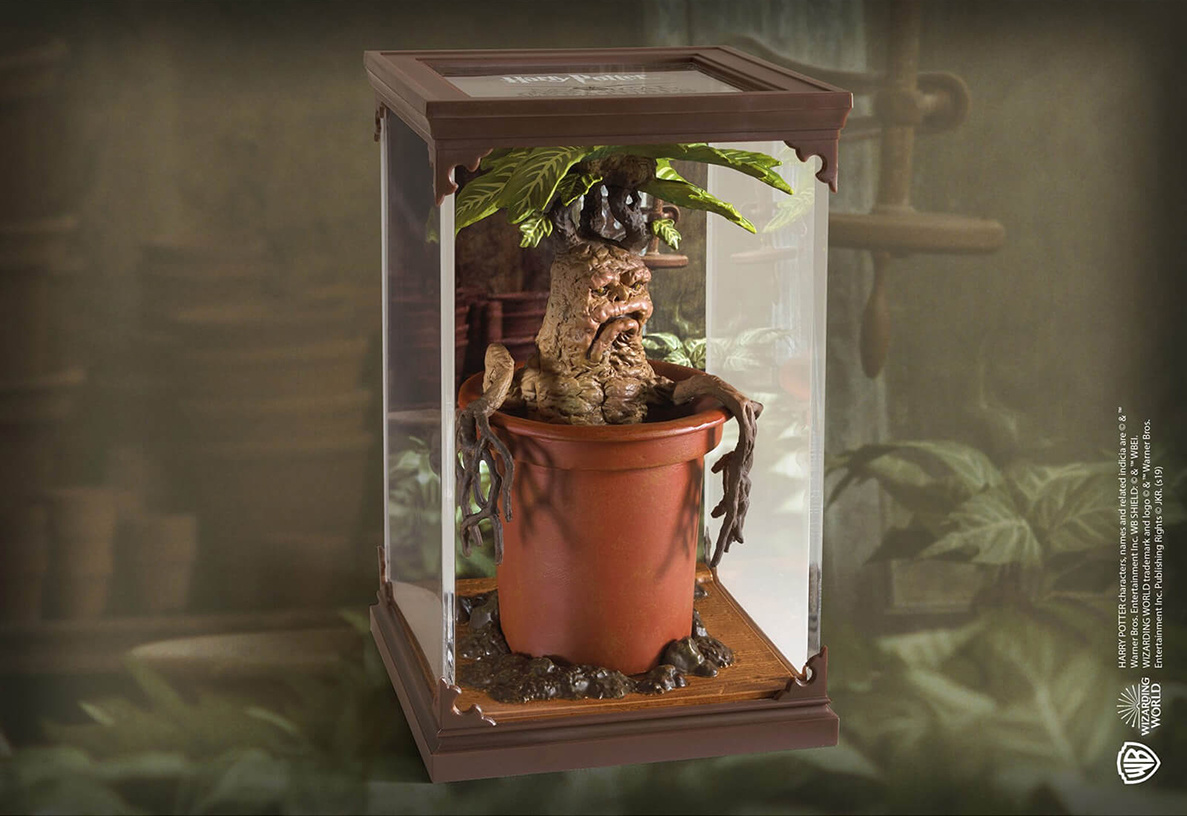 Harry Potter: Magical Creatures - Mandrake